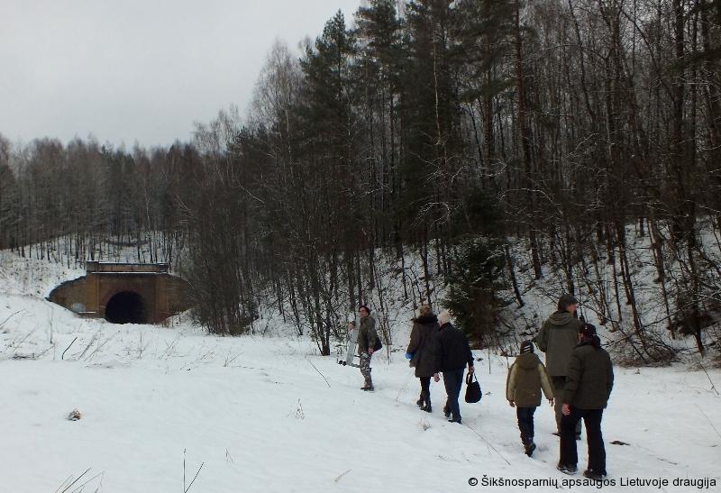 Aukštųjų Panerių tunelis